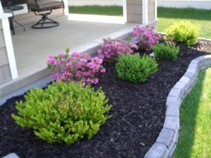 quality landscape maintenance