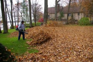 geaux cuts leaf cleanup shreveport bossier